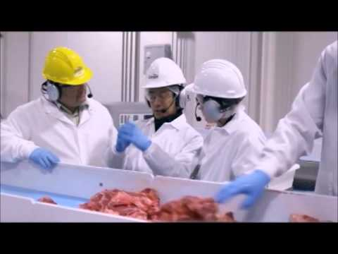 Grant Imahara spits all over the meat in McDonalds burger plant