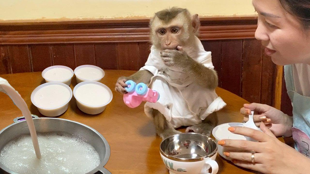 Baby Monkey | Mom Make Jelly And  DouDou Very Like To Eat