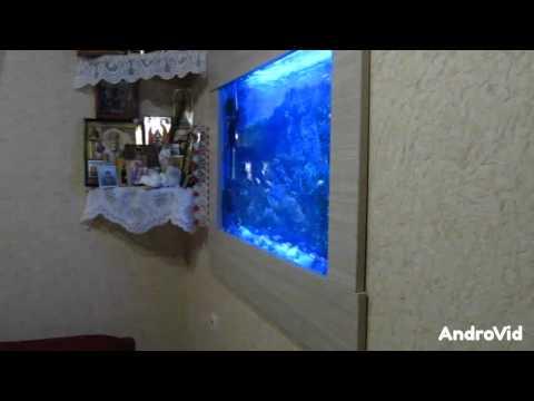 Сделай Сам. Встроенный аквариум - картина г.Брест