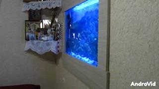видео Как сделать аквариум в стене