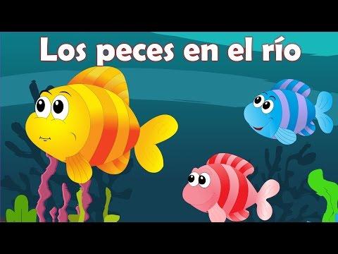 Los peces en el río | Canciones navideñas | Villancicos en español | Canciones infantiles