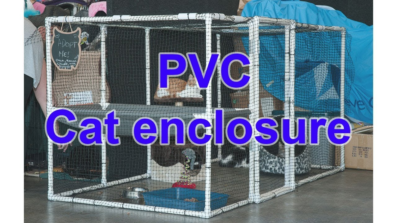 Diy Cat Pvc Cage Enclosure You
