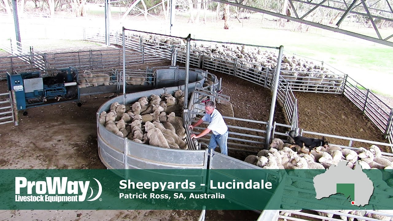 Lucindale, South Australia