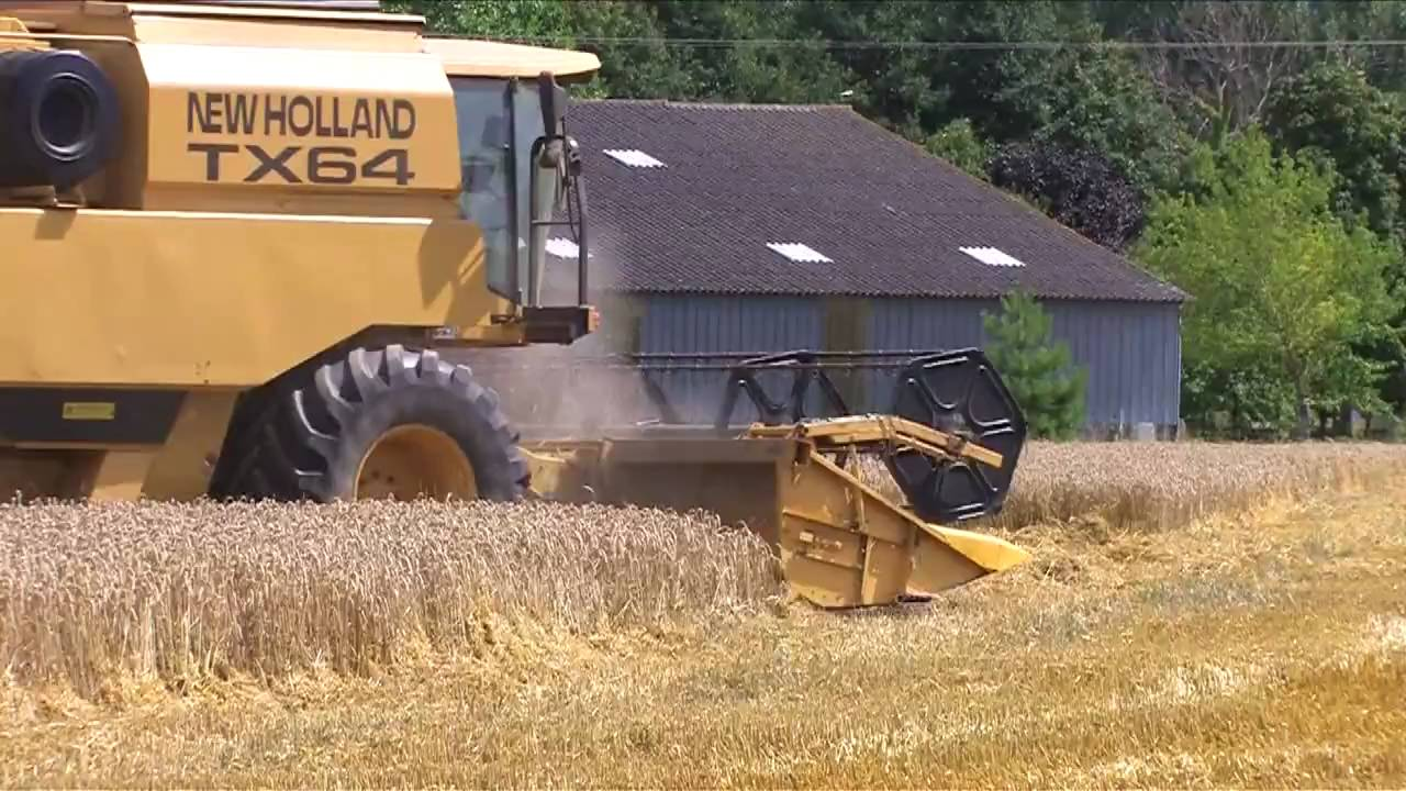wheat harvest moisson du bl avec une new holland tx64 youtube. Black Bedroom Furniture Sets. Home Design Ideas