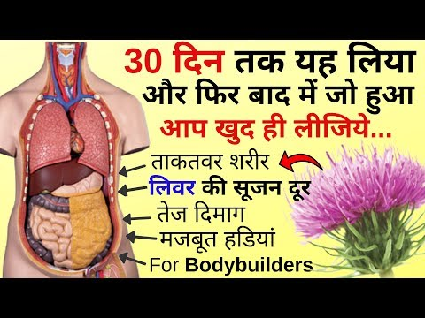 Repeat Milk Thistle Benefits Hindi | Milk Thistle Ke Fayde | Milk