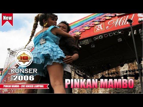 PINGKAN MAMBO | GAK KUAT NGLIATNYAA.. (LIVE KONSER LAMPUNG 2006)