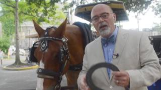 Charlie James with Charlie the Horse