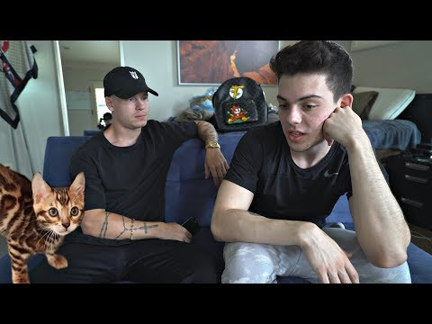 Replacing our kitten with another animal... ft. FaZe Adapt