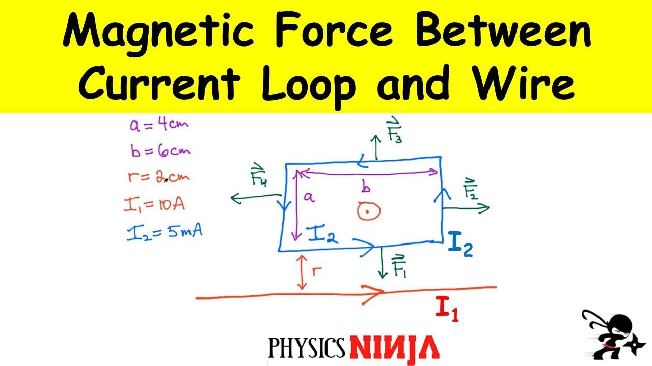 Force Of Magnetic Field Loop Of Wire - WIRE Center •
