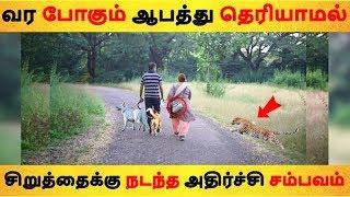 வர போகும் ஆபத்து தெரியாமல் சிறுத்தைக்கு நடந்த அதிர்ச்சி சம்பவம்| Tamil News | Tamil Seithigal
