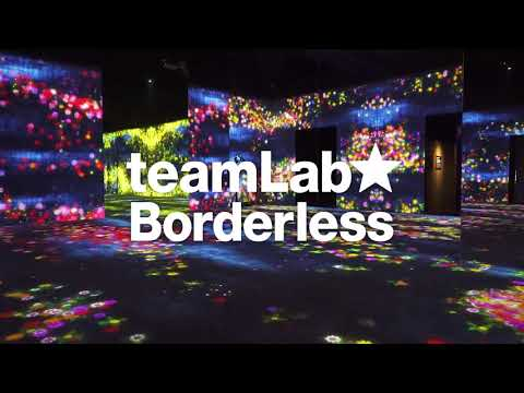 MORI Building DIGITAL ART MUSEUM: teamLab Borderless / 森ビル デ