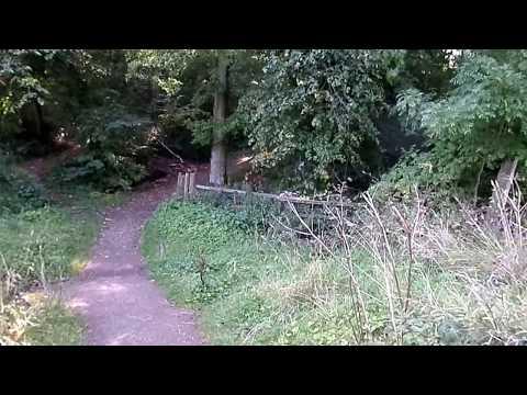 Picken's Park, Ha-ha, Chalybeate Spring, Anderston's Plantation on the Lainshaw Estate