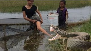 Wow!! Amazing Two Girls Remove Snakes From Trap
