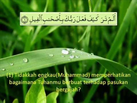 105. Surah Al Fil - Terjemahan (Audio)