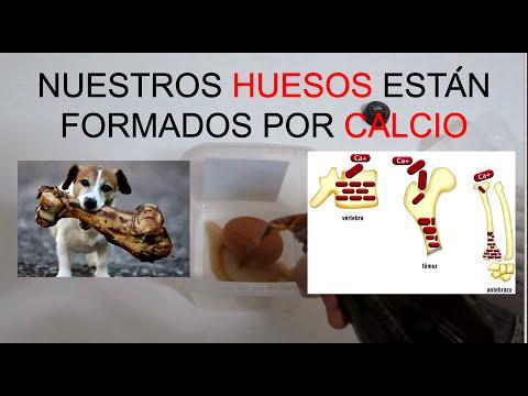 COCA-COLA se come nuestros HUESOS!! Huevo atacado por la Coca-Cola!!