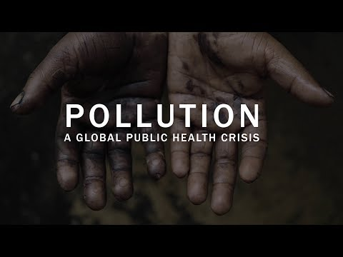 Pollution: a global public health crisis