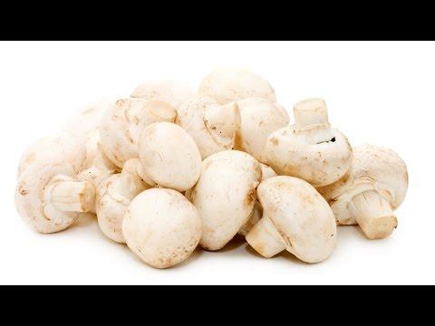 Clique e veja o vídeo Cultivo de Cogumelo Champignon - Colheita