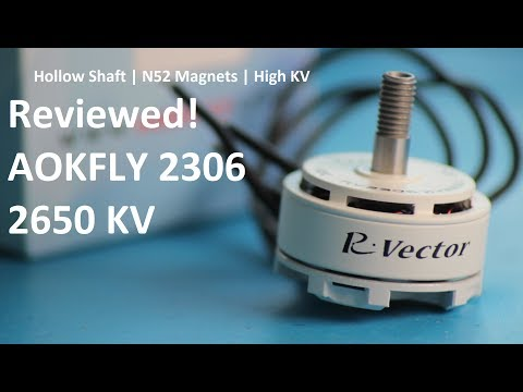 AOKFLY RV 2306 2650kv Motor Review - the new High Power, Low Cost standard?!