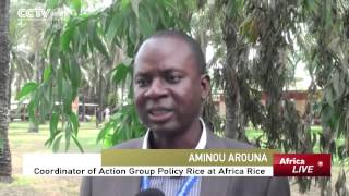 Researches on Ways to Decrease Rice Imports in Africa