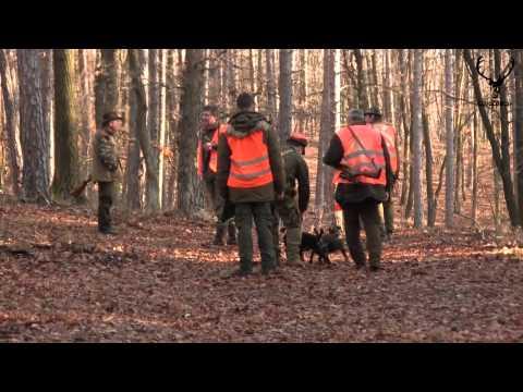 spoločná poľovačka na diviaky PZ Obyce - Machulince (28.12.2013)
