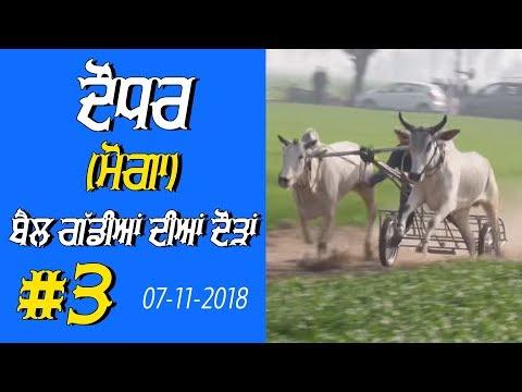 OX RACES #3 🔴 ਬੈਲ ਗੱਡੀਆਂ ਦੀਆਂ ਦੌੜਾਂ बैलों की दौड़ें  بیلوں کی دودن  at DAUDHAR Moga 17 01 2019