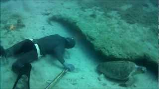 Ψαροντούφεκο - Spearfishing Σφυρίδες 2 DeepCarbon