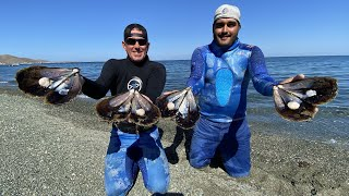 MASSIVE *SCALLOPS* in MEXICO Catch Clean and Cook BlueGabe Style