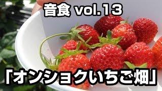 2014年5月18日(日)に音食vol13「オンショクいちご畑」が開催されまし...