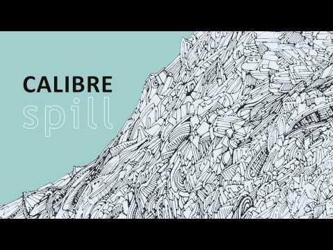 Calibre - Key Flix • /r/DnB