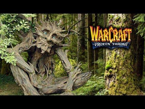 видео: ffa warcraft 3 - лес - мой главный враг!