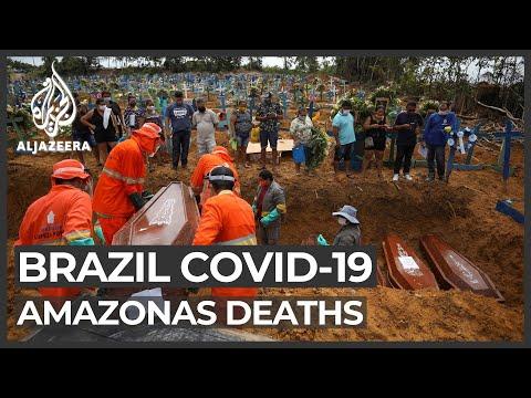 Brazil virus outbreak: