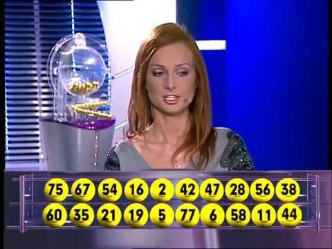 Studio Lotto - Ostatnie Losowania Express Lotka I Dużego Lotka