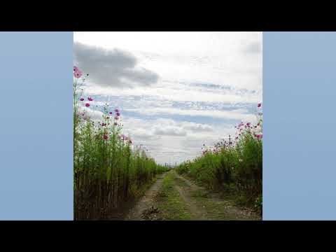Motohiro Nakashimaa - We Hum On The Way Home (full Album)