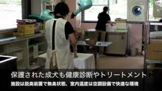 人と動物が共生する潤い豊かな社会をめざして、長野県は「ハローアニマ...