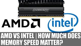 AMD vs Intel | How Much Does Memory Speed Matter ?