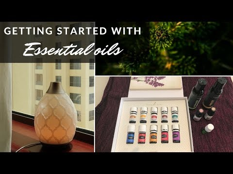 review-of-plant-therapy-and-young-living-essential-oils-|-my-favorite-blends