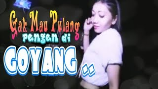 Download Video Auto Basahhh💦 18+ Goyang HEBOH Dangdut Biduan Cantik Hot MP3 3GP MP4