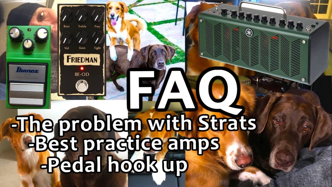 Best Practice Amp 2019 FAQ May 2019 #8 Best practice amps The Strats problem Bluesy Tone