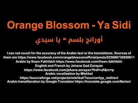 Orange Blossom - Ya Sidi أورانج بلسم - يا سيدي Netflix Marseille LYRICS FRANÇAIS/العربية/ENGLISH