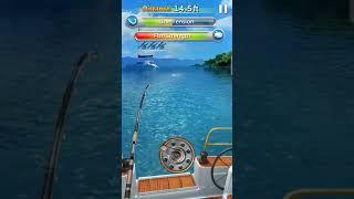 Fishing малко забаление