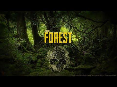 The Forest сложность максимум прохождение 1 серия.