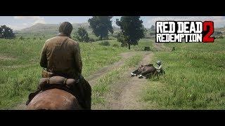 Red Dead Redemption 2 #11 - Dame in Gefahr - GamerBaron