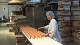 видео Контрольная работа: Безопасность труда на предприятии
