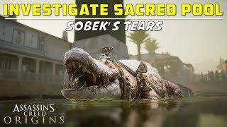 Investigate Sacred Pool | Temple of Sobek, Krokodilopolis | Sobek's Tears Investigation | AC Origins