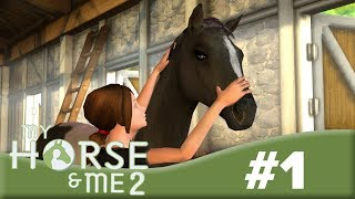 Welcome to Green Valley! 🌳🐴 | My Horse & Me 2 #1