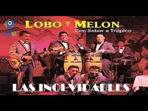 Mix de 11 exitos Inolvidables del Lobo y Melon