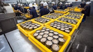 How it made Canned Tuna processing line in Factory