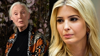 Jane Goodall reacts to quote in