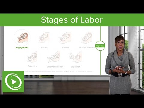 Stages of Labor: Stages 1, 2 & 3 of Normal Labor – Obstetrics | Lecturio