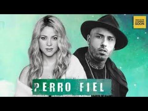Shakira Ft. Nicky Jam - Perro Fiel /link de descarga (audio official)